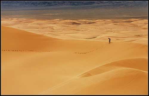 Conociendo el desierto de Gobi