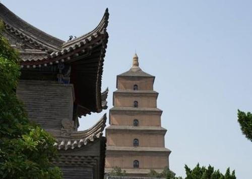 Pagoda Gran Oca Salvaje