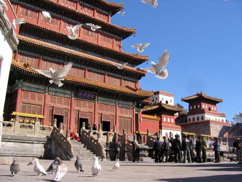 Templo Puning si