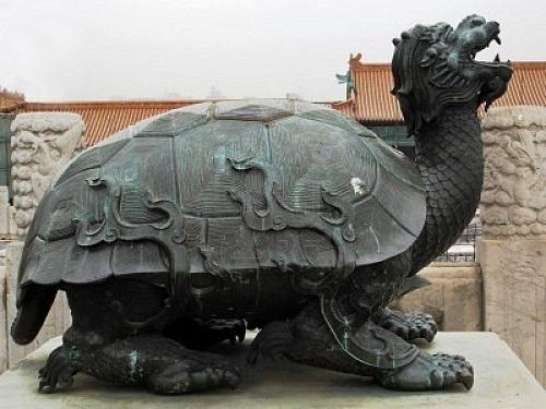 Tortuga China