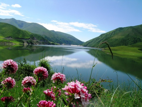 Lago Qinghai, rescatando su belleza