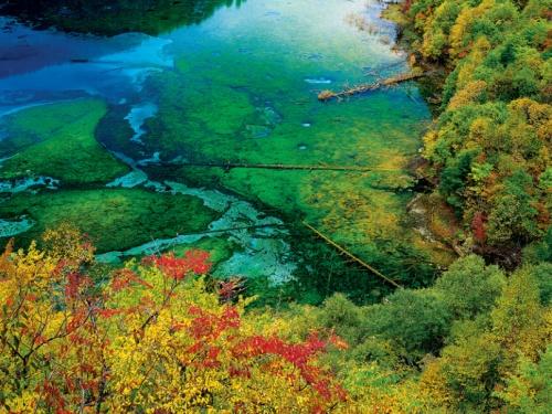 Paisajes protegidos en el Valle de Jiuzhaigou