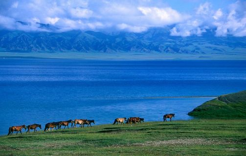 Pastizales del Sur, belleza natural en Urumqi