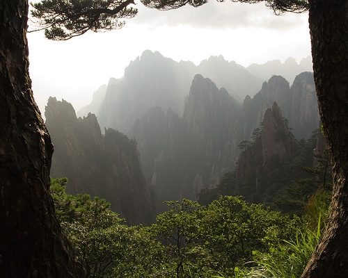 Lista del Patrimonio Mundial. - Página 2 Huangshanmount8297