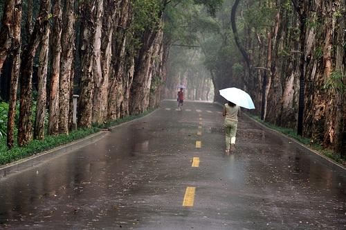 Parque Nacional de Fuzhou