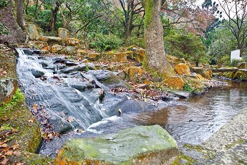 Manantiales en el Monte Yangming