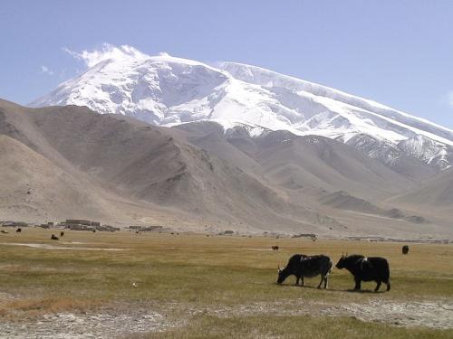 Alrededores de Kashgar