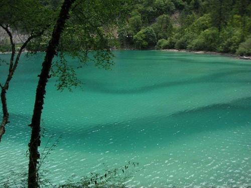 Lago Panda en el Valle Rize